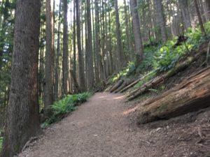Mailbox Peak Trail